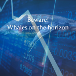 Whales Incoming? or Just a Little Bull Market